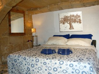 Double Room in Typical Farmhouse B&B