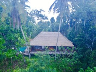 Jungle Wooden Villa in Ubud