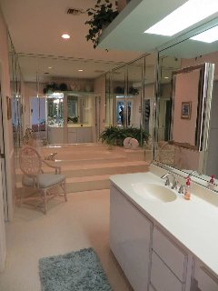 Master Bathroom area