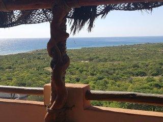 Casa Tortuga -Cabo Pulmo