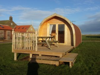 Kestrel Camping Pod