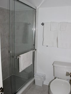 The master bathroom has a huge walk in shower.