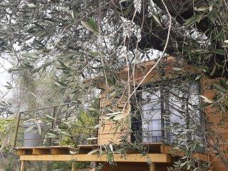 Atypique 3 P dans maison d'architecte en bois avec terrasse et piscine