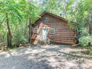 Dog-friendly log cabin w/ in-room Jacuzzi, screened-in deck, & outdoor hot tub