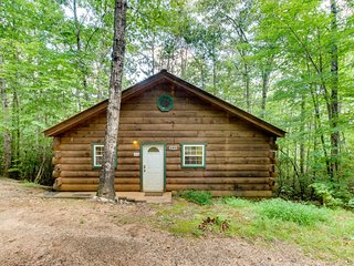 Dog-friendly log cabin w/hot tub, screened-in deck & heart-shaped jetted tub!