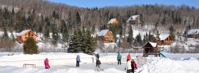 Winter Hockey Game on Private Rink