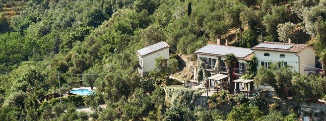 Vue sur l'ensemble du domaine avec des maisons, la piscine et oliveraie.