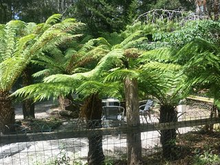 Woodlands Retreat Adventure Bay,Bruny Island