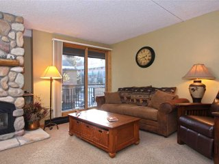 1 bedroom ski-in condo, best location in Breck, hot tubs, recently remodeled!