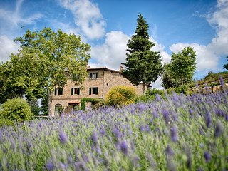 Luxury Chianti with two Bedrooms