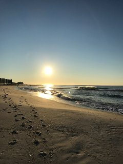 Morning stroll on the beach