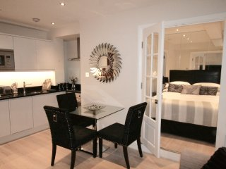 Modern Large One Bedroom Apartment