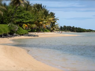 Ideal Setting, White Sandy Beach, Tropical Location
