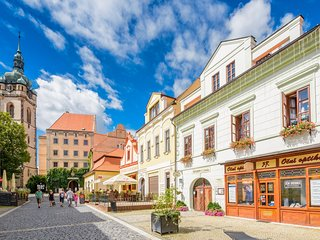 Pension near the castle Melnik **** - near Prague