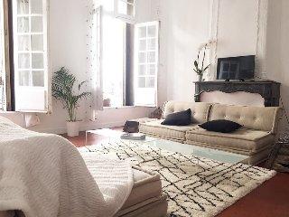 'Le Calas Appart'   appartement de 150 m2 en plein centre ville