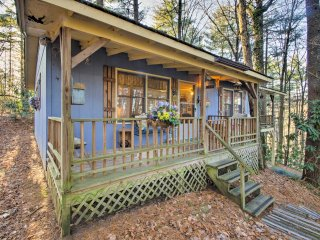 Charming Hendersonville Cottage w/Porches & Views!