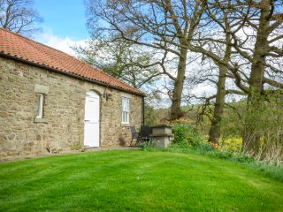 WITTON VIEW COTTAGE, 17th century stone cow byre, WiFi, River Wear 5 mins walk