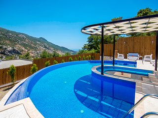 Secluded Two Bedroom Honeymoon Villa with Large Semi-circular Pool and Jacuzzi