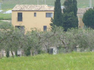 The Countryhouse Tra gli Ulivi