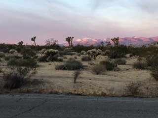 Panoramic Views! Minutes From The Joshua Tree National Park