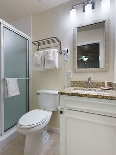 Master Bath with new shower tile
