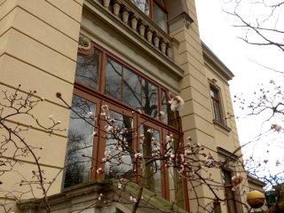 107m² große Etagenwohnung mit Balkon und WIGA