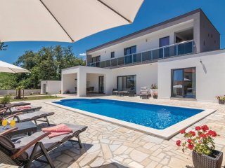 4 bedroom Villa in Vinež, Istria, Croatia : ref 5537923