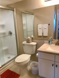 Newly remodeled master bath with walk-in shower