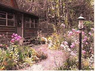 Woodhaven Cabin, jacuzzi bath, fireplace, kitchen in ouachita mts near Mena AR