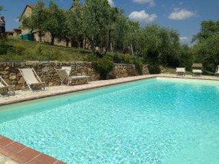 Sunny, modern apartment on Chianti winefarm
