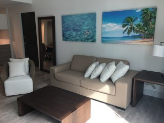 AMAZING NEW CONDO IN HOLLYWOOD ACCESS DIRECT BEACH F5