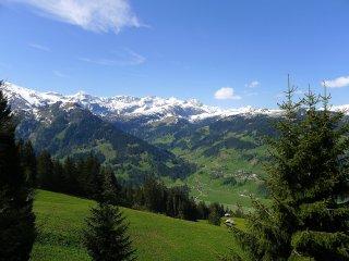 3 bedroom Villa in Indere Brand, Bern, Switzerland : ref 5556076