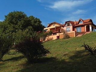 4 bedroom Villa in Henrikovci, Vukovar-Sirmium, Croatia : ref 5542637