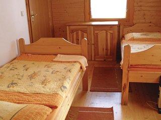 3 bedroom Villa in Svojanov, Pardubický kraj, Czech Republic : ref 5542168