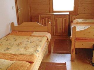 3 bedroom Villa in Svojanov, Pardubický kraj, Czech Republic : ref 5542167