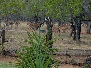 Patrysbos Guest Farm