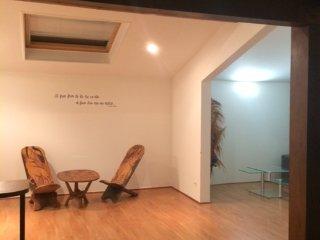 Appartement de 70 M2 atypique, chaleureux, calme à Annecy proche de Genève