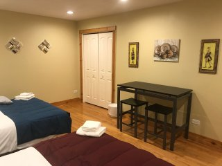 Entire Studio Apt with two comfortable Beds Great Locatio free wi fi