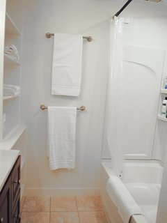 2nd Bathroom with recessed lighting in the shower, shampoo, cream rinse and soft soap provided.