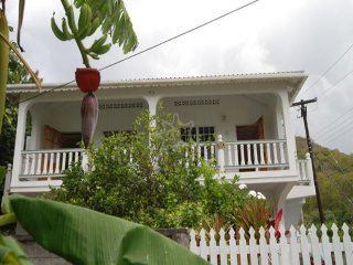 Breadfruit & Papaya - Bequia
