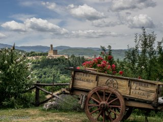 Fontebranda: campagna Toscana