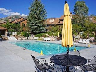 4 Season Resort Condo w/Deluxe Amenities