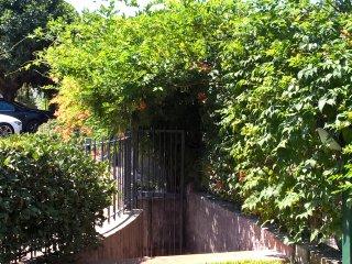 Casa Michelangela - Garden and the Sea