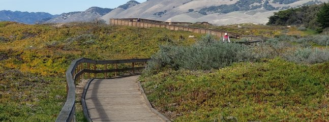 Walking, hiking and bike paths are all around the condo.
