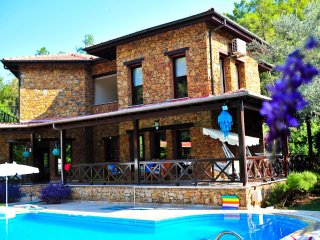 Detached Villa with Pool, garden with privacy