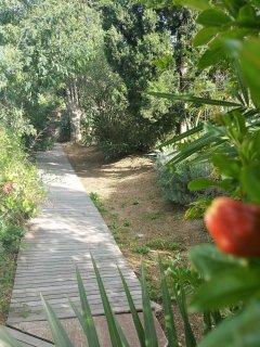 Pour flâner et se détendre dans le jardin bio méditerranéen