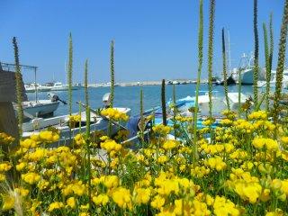 Romantic apt.DELFIN just 100m from sandy beach