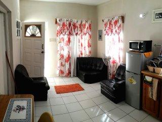 Ian's cozy flat. 20 minutes from Ocho Rios.