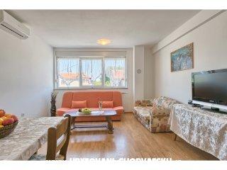 Apartment 1878