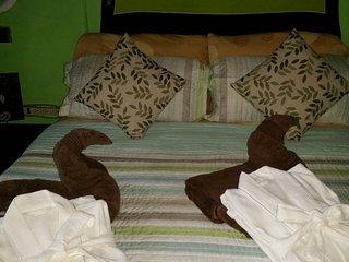 manuel antonio comfort casa macaow.